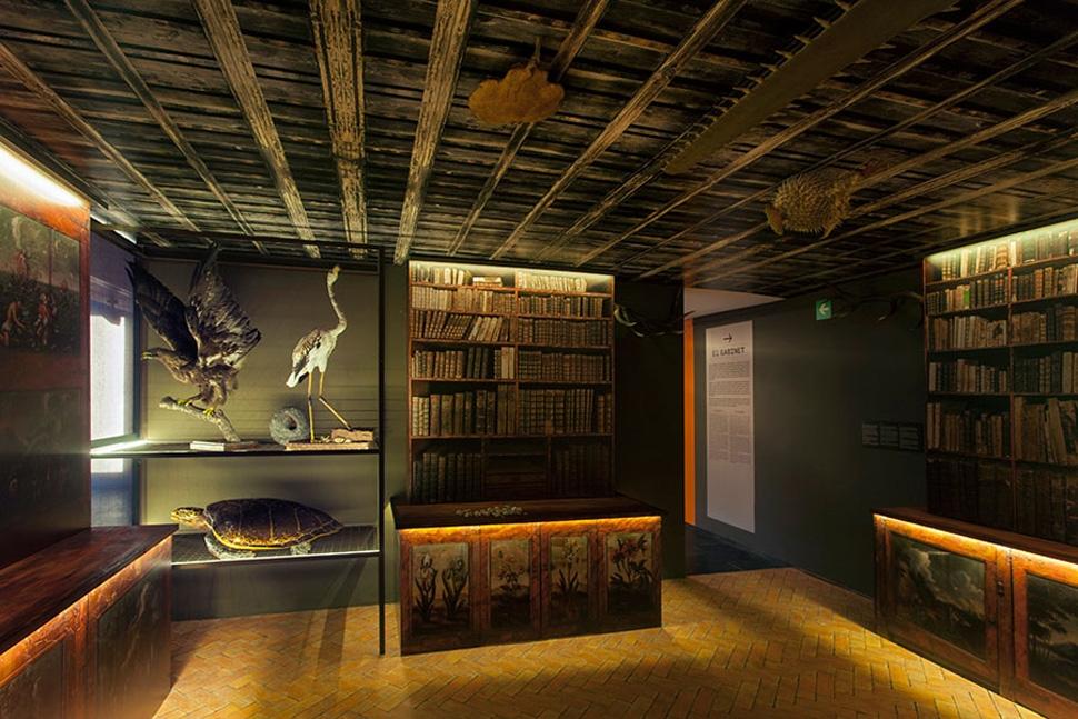 Museu de Ciències Naturals de Barcelona, Salvadoriana. El gabinete de curiosidades de Barcelona,